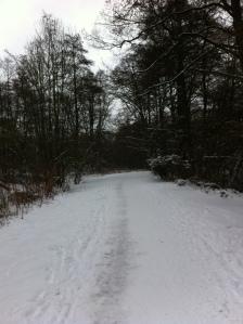 Alsterwanderweg im Schnee
